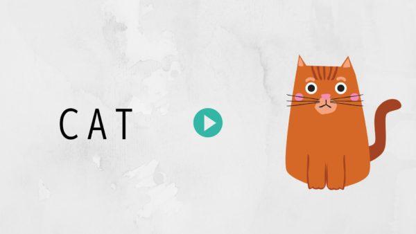 英単語の覚え方cat