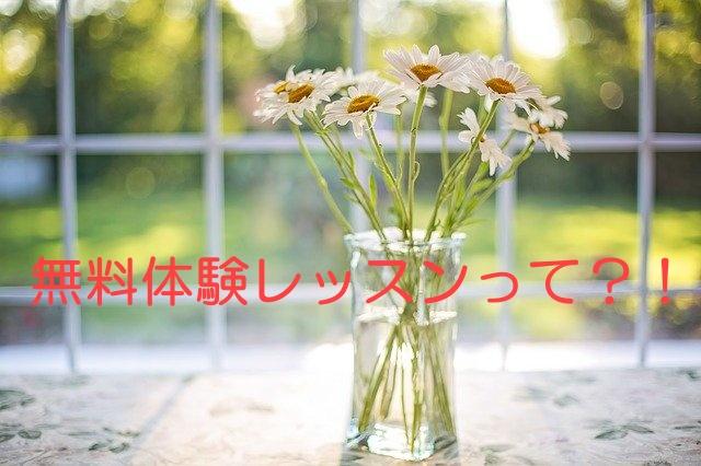 花瓶に入ったデイジー